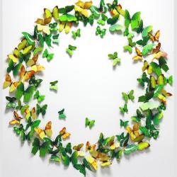 Motýle na stenu 12ks - Zelená